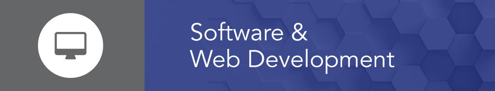 Software and Web Developers